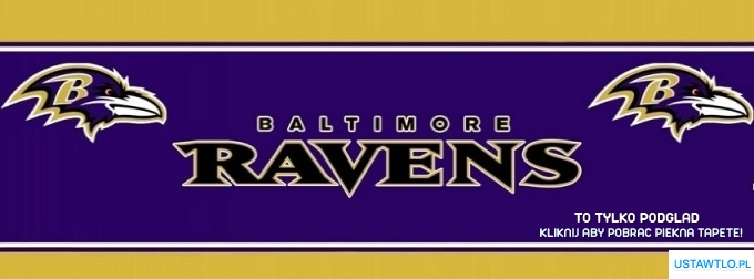 cover Baltimore Ravens