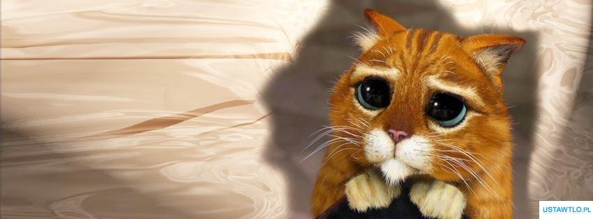 Tło Na Facebooka Kot Ze Shreka