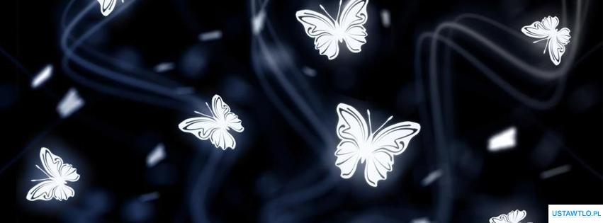 tło Tło Motylki na facebooka oś czasu