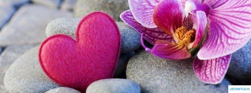 tło Orchidea i serce na facebooka oś czasu